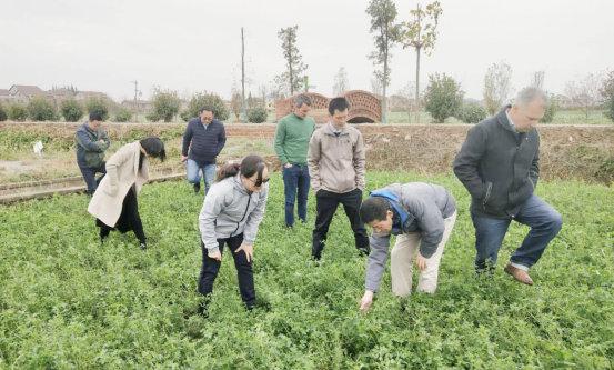 巴西专家与国内草种企业家到访德人牧业19.jpg