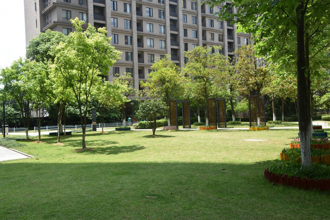 城市绿化伟德国际英国1946